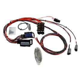 AEM Infinity-8/10/12 & 812 Mini Harness for GM LS Engines 24x